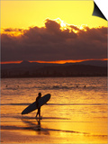 Person with Surfboard Walking along Beach at Sunset, Gold Coast, Queensland, Australia Posters by David Wall
