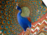 Peacock Gate in Pitam Niwas Chowk at City Palace Prints by Kimberley Coole