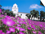 Flowerbed and Junipero Serra Museum, Presidio Park, Old Town, San Diego, United States of America Prints by Richard Cummins