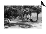 Miami, Florida - Bayfront Park Promanade Scene Art by  Lantern Press