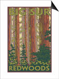 Big Sur, California - Redwoods Poster by  Lantern Press