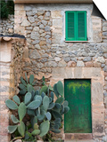 Opuntia Cactus and Green Door Posters by Holger Leue