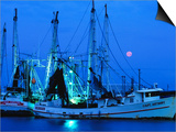 Moon over Shrimp Trawlers in Harbour, Palacios, Texas Posters by Holger Leue