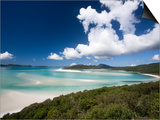 Whitehaven Beach from the Lookout on Whitsunday Island Posters by Tim Barker