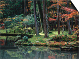 Saiho-Ji Garden in Autumn, Kyoto, Japan Posters by Frank Carter