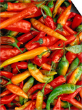 Chillies Posters by Jean-Bernard Carillet