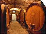 Aging Barrels in Castellina in Chianti Enoteca, Chianti, Tuscany, Italy Posters by John Elk III