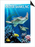 Outer Banks, North Carolina - Sea Turtles Posters by  Lantern Press