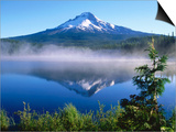 Trilium Lake with Mt. Hood in Background, Mt. Hood, Oregon Posters by John Elk III