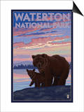 Waterton National Park, Canada - Bear & Cub Poster by  Lantern Press