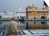 Sikh Man Meditating in Front of the Golden Temple, Amritsar, India Posters by Anthony Plummer
