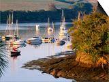 Boats on Kingsbridge Estuary at East Portlemouth, Evening, Salcombe, Devon, England Prints by David Tomlinson