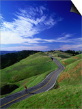 Bicycle Rider on Long and Winding Road, Mount Tamalpais, California, USA Posters by Thomas Winz