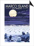 Marco Island, Florida - Baby Sea Turtles Prints by  Lantern Press