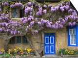 Cottage with Wisteria in Flower, Broadway, United Kingdom Print by Barbara Van Zanten