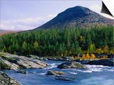 Sjoa River Flowing Past Forest at Foot of Sjolikampen Hill, Norway Posters by Anders Blomqvist