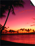 Sunset at Anaehoomalu Beach, Waikoloa, Hawaii, USA Poster by Ann Cecil