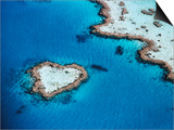 Heart-Shaped Reef, Hardy Reef, Near Whitsunday Islands, Great Barrier Reef, Queensland, Australia Posters by Holger Leue