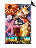 Marco Island, Florida - Shells Montage Print by  Lantern Press