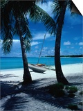 Outrigger Canoe on a Palm-Fringed Beach, Marshall Islands Print by Oliver Strewe