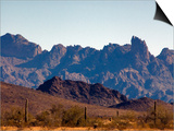 Kofa Mountains, Kofa National Wildlife Refuge Posters by Mark Newman