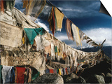 Prayer Flags Above Leh, Ladakh, Leh, Jammu and Kashmir, India Posters by Richard I'Anson