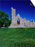 Quin Abbey Franciscan 15th Century Friary, County Clare, Ireland Posters by Gareth McCormack