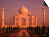 Taj Mahal Glows at Sunrise, Agra, Uttar Pradesh, India Art by Dallas Stribley