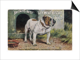 "Bulldog Stands Outside His Kennel in an Advertisement for ""City Meat"" Dog Biscuits Posters"