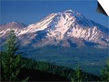 Mt. Shasta across Lake Siskiyou, California Posters by John Elk III