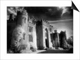 Birr Castle, Birr, County Offaly, Ireland Posters by Simon Marsden