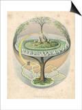 Yggdrasil the Sacred Ash the Tree of Life the Mundane Tree of Norse Mythology Posters