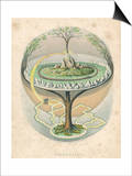 Yggdrasil the Sacred Ash the Tree of Life the Mundane Tree of Norse Mythology Posters