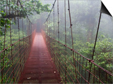 Cost Rica Monteverde Eco Tourism Canopy Walkway in Cloudfores Poster por Christer Fredriksson
