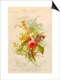 European Flowers Used in Making Perfumes Posters