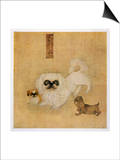 White Pekingese Dog and Puppies as Depicted in an Imperial Dog Book Prints