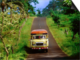 Bus Travelling on Island Road, Upolu, Samoa Posters by Peter Hendrie