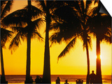 A Waikiki Winter Sunset, Honolulu, Oahu, Hawaii, USA Art by Ann Cecil