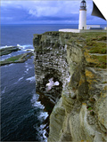Lighthouse and Cliffs at Noup Head Rspb Reserve, Westray, Orkney Islands, Scotland Prints by Gareth McCormack
