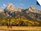 Horses and the Teton Range Art by Douglas Steakley