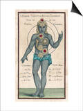Theosophy Chakras 1696 Prints