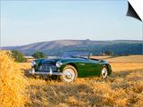 1961 Austin Healey 3000 Mk1 Posters