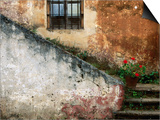 Adobe Stairs with Geraniums Posters by Douglas Steakley