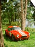 1964 AC Cobra Le Mans Posters