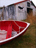 Red Boat Outside Shed with a Stop Whaling Sign Prints by Ralph Hopkins