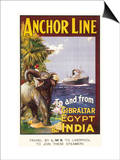 Anchor Line Poster for Ship Travel Between Gibraltar, Egypt and India with an Elephant Prints