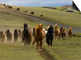 Icelandic Horses Runnng Near Landmannalaugar, Iceland Prints by Inaki Relanzon