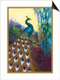 Ornamental Peacock Art