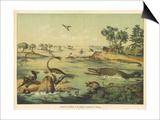 Animals and Plants of the Jurassic Era in Europe Prints by Ferdinand Von Hochstetter