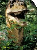 Model of Allosaurus Dinosaur at the National Zoo, Washington Dc Prints
